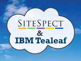 sitespect tealeaf cloud on blue resized 600