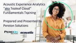 Pereion Acoustic Experience Analytics Fundamentals Training