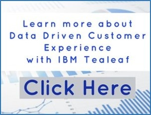 Download Pereion Solutions' IBM Think Presentation, Data Driven Customer Experience with IBM Tealeaf, or request a consult